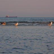 Tramonto sulla spiaggia del Lido