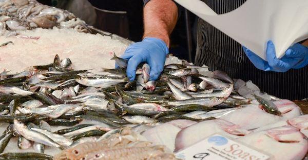 pesce mercato rialto RID