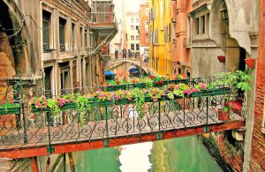 venice-canal-transition-bridge-flowers2